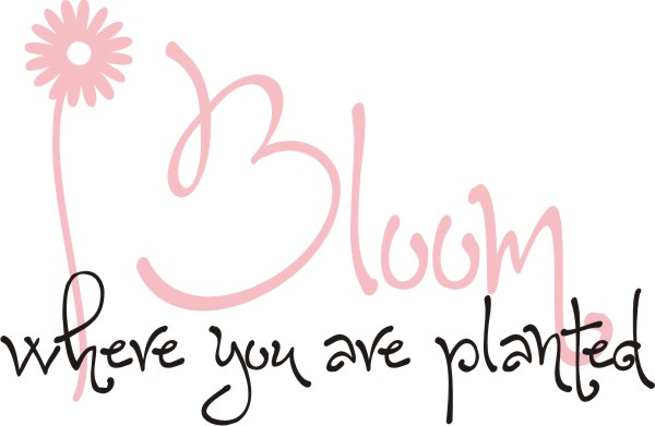 Bloom Where You Are Planted Quote The Walls